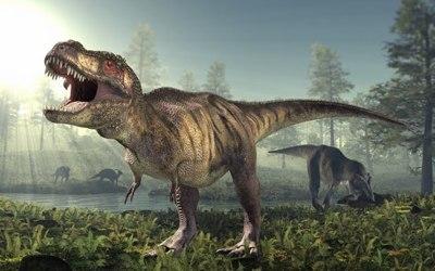Triassic ไทรแอสซิก