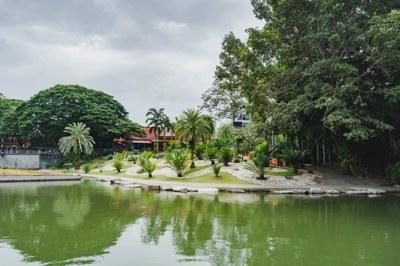 สวนไม้ชายน้ำ