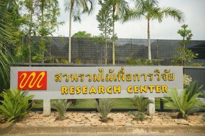 สวนรวมไม้เพื่อการวิจัย
