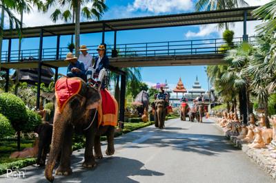 นั่งช้างชมสวนสวย