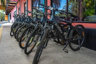 ปั่นจักรยานชมสวน และพันธุ์ไม้