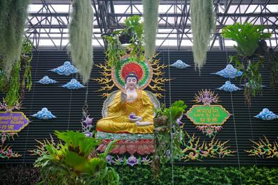 Seven Buddha of Asia